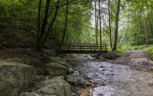 Rezerwat Dolina Racławki